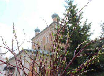 Вербное воскресенье в городе Починке